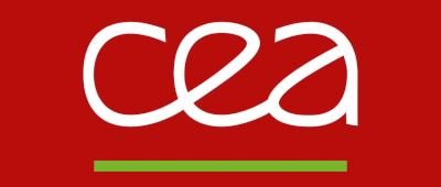 Le CEA de Grenoble utilise un logiciel métier développé sur mesure par Algolys